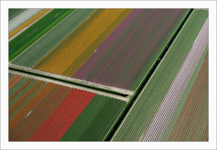 Campos tupilanes Holanda (11)