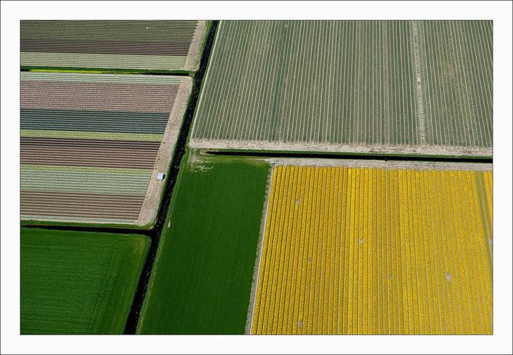 Campos tupilanes Holanda (12)