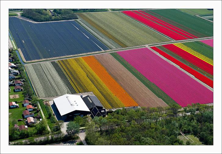 Campos tupilanes Holanda (2)
