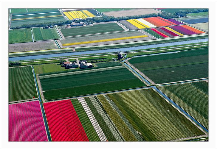 Campos tupilanes Holanda (3)