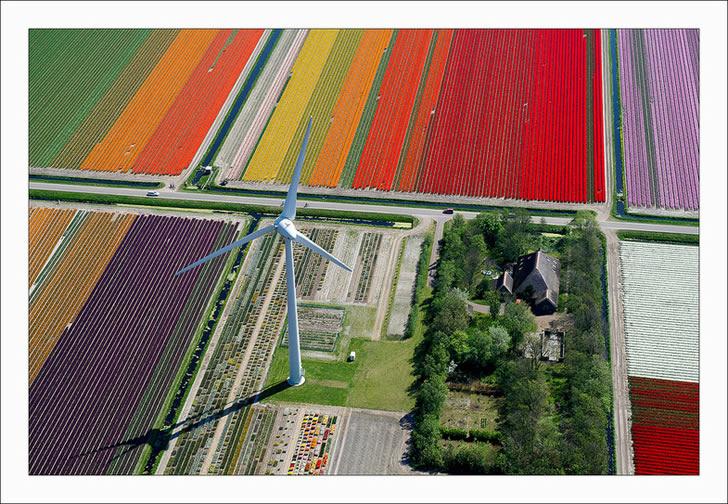 Campos tupilanes Holanda (4)