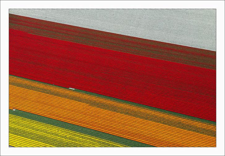 Campos tupilanes Holanda (5)