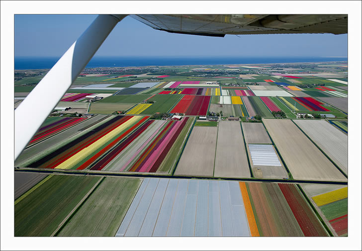 Campos tupilanes Holanda (6)
