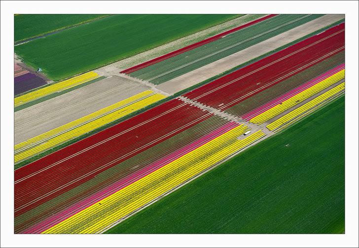 Campos tupilanes Holanda (7)