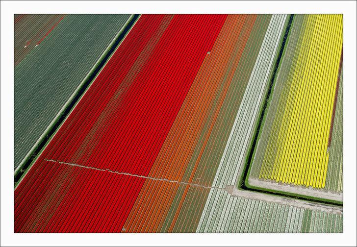 Campos tupilanes Holanda (9)
