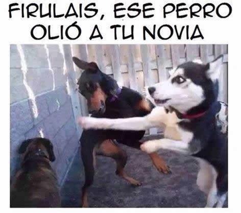 Marcianadas_176_2404151022 (400)
