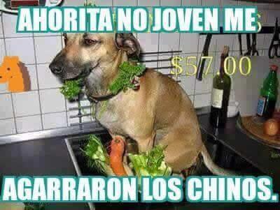Marcianadas_176_2404151022 (482)