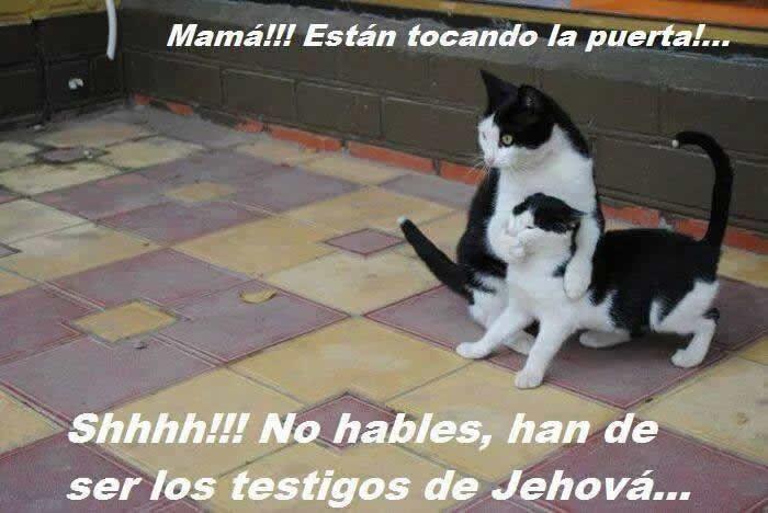 Marcianadas_176_2404151022 (558)
