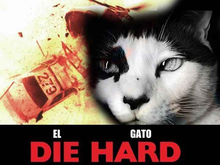 die hard gato