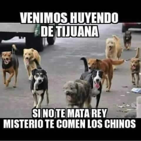 Marcianadas 178 0805151249 (233)