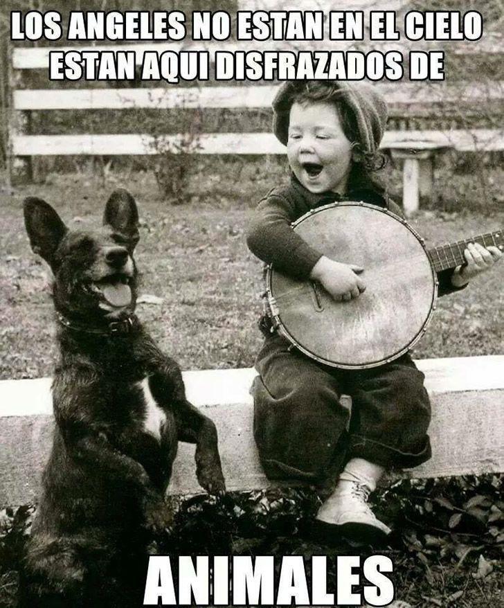 Marcianadas_177_010515 (237)