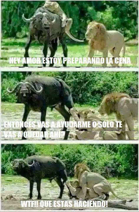 Marcianadas_180_2205150940 (100)