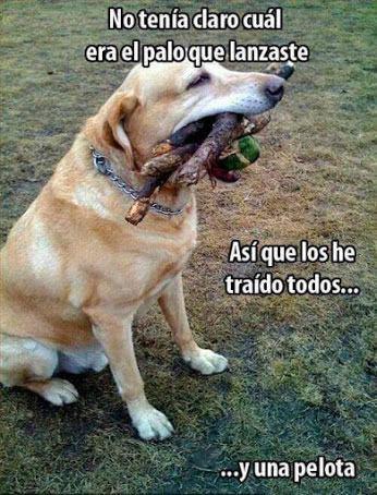 Marcianadas_180_2205150940 (21)