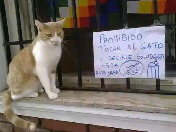 Marcianadas_180_2205150940 (71)