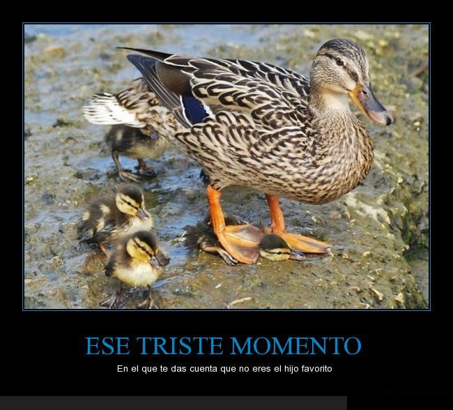 Marcianadas_181_290515 (132)