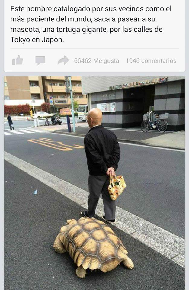 Marcianadas_181_290515 (294)