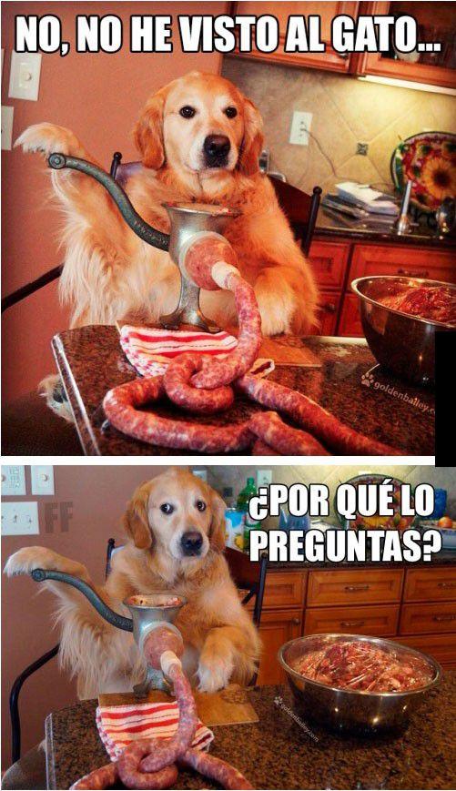 Marcianadas_181_290515 (34)
