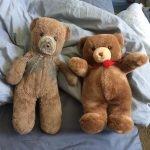 Madre compra dos osos de peluche idénticos – uno para su hijo y otro para el futuro nieto