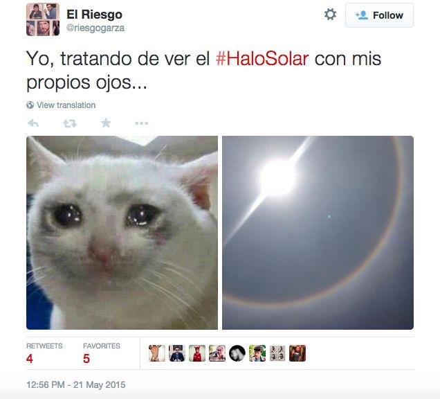 memes halo solar mexico 21 (6)