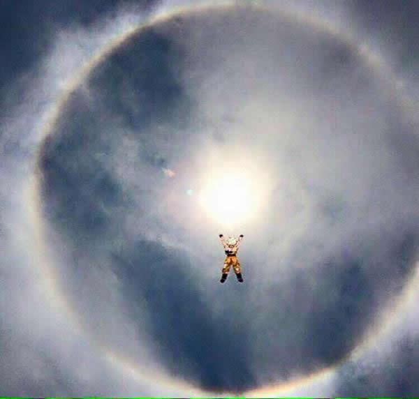 memes halo solar mexico 21 mayo (18)