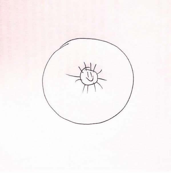 memes halo solar mexico 21 mayo (9)