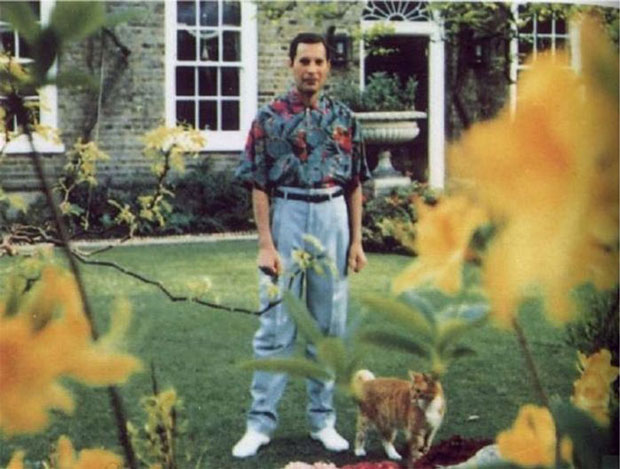 ultima foto de  Freddy Mercury (20)