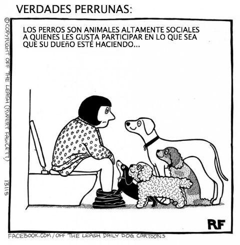 Marcianadas 184 19062015 (367)