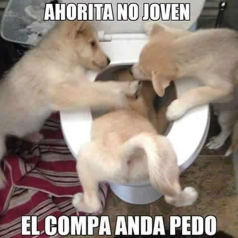Marcianadas_182_050620151039 (136)