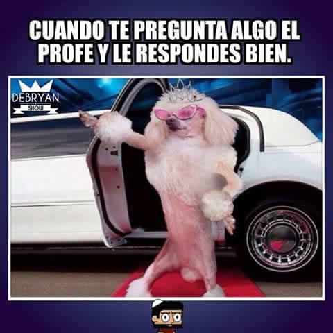 Marcianadas_182_050620151039 (180)