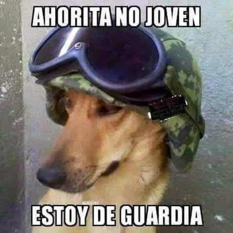Marcianadas_182_050620151039 (315)