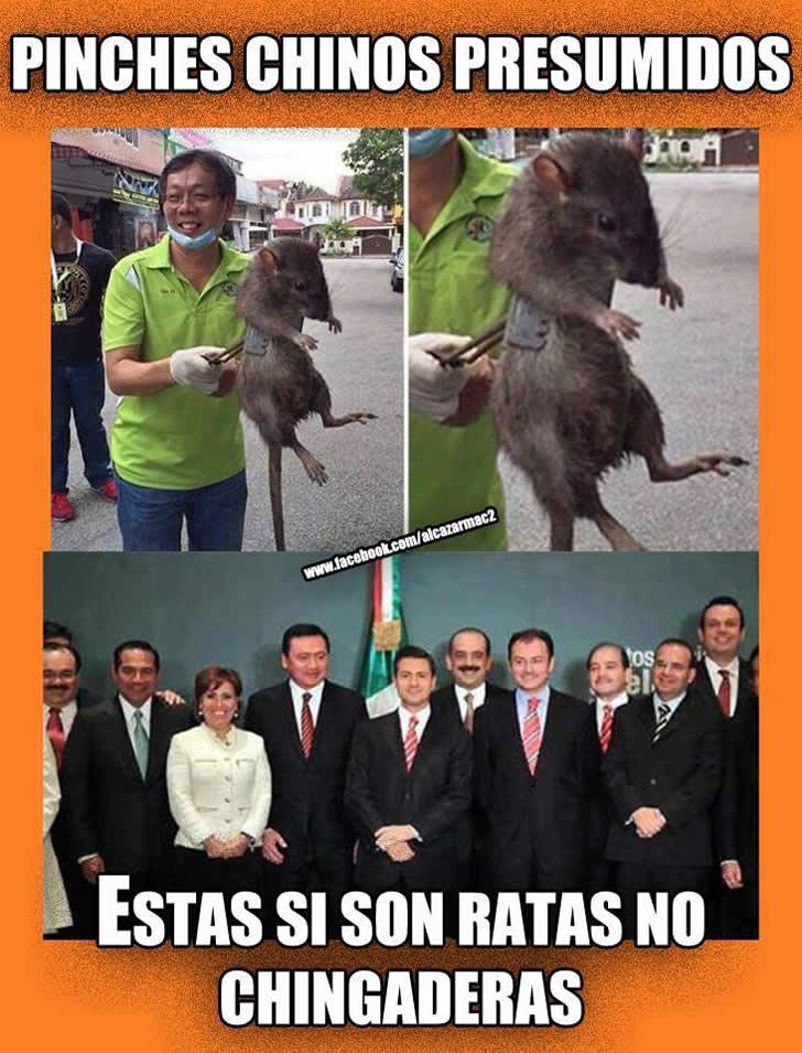 Marcianadas_182_050620151039 (340)