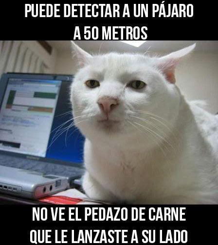 Marcianadas_182_050620151039 (373)