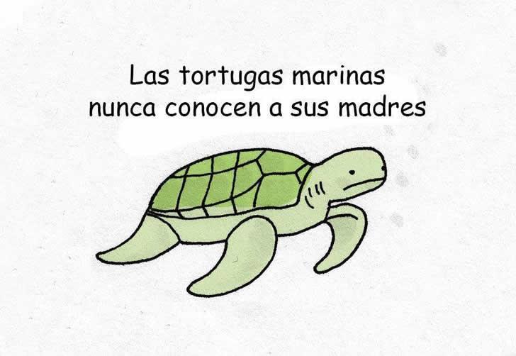 Marcianadas_183_120620150152 (168)