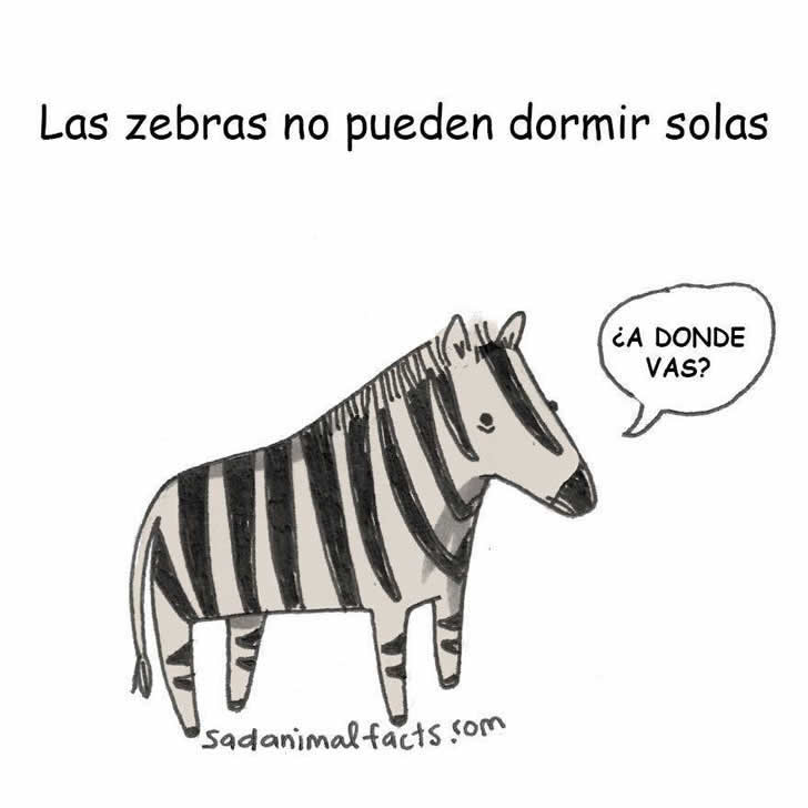 Marcianadas_183_120620150152 (181)