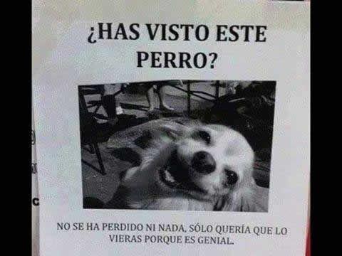 Marcianadas_183_120620150152 (196)