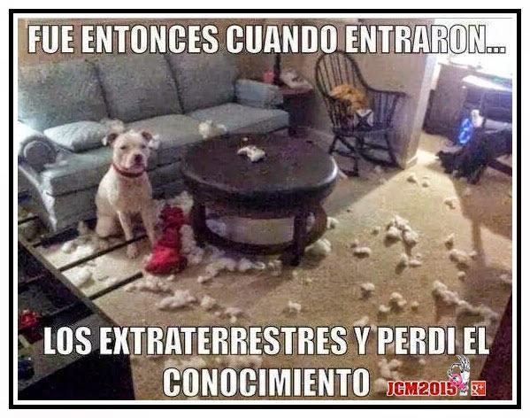 Marcianadas_183_120620150152 (79)