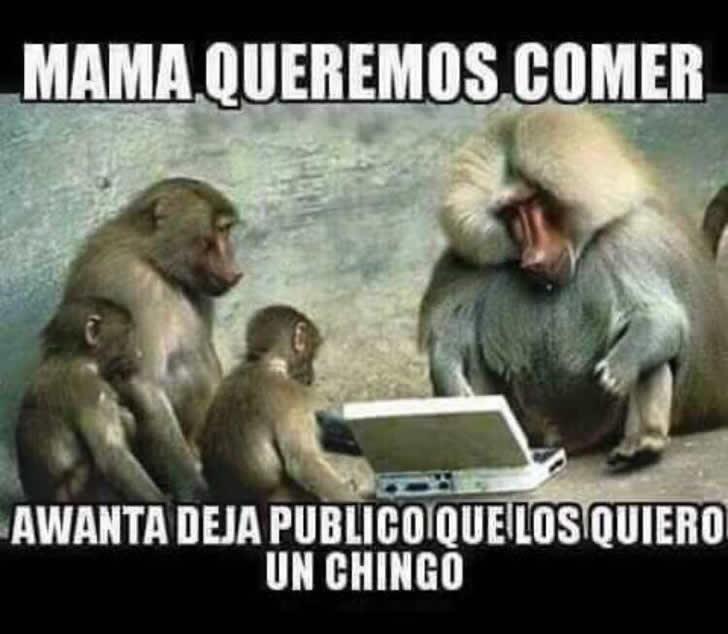 Marcianadas_185_2606150128 (196)