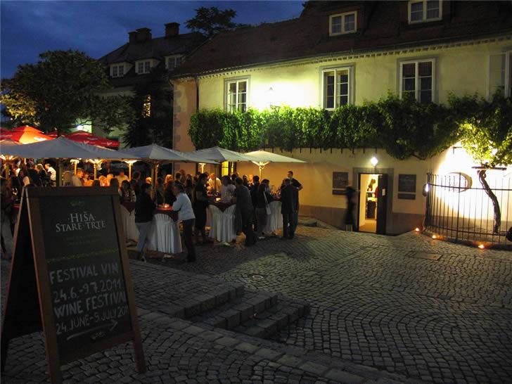 The Old Vine House Eslovenia (6)