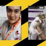 Exhiben maltrato animal por empleados de +KOTA en Pachuca