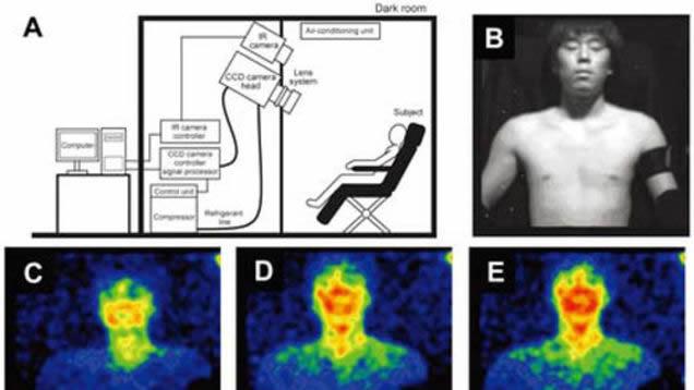 vision bioluminiscencia humanos