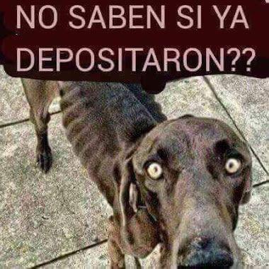Marcianadas_186_03072015 (194)