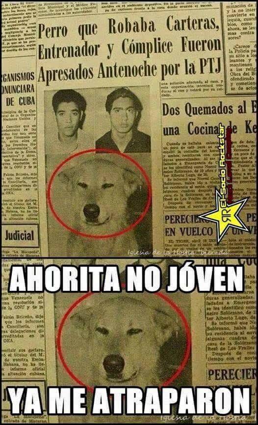 Marcianadas_187_1007151248 (235)