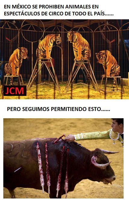 Marcianadas_187_1007151248 (50)