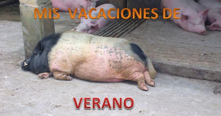Marcianadas_189_24072015 (5)