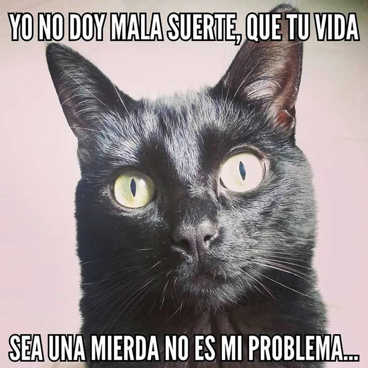 Marcianadas_190_310720150950 (281)