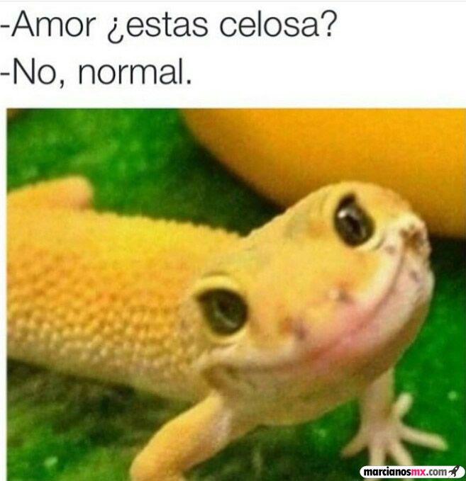 Marcianadas_190_310720150950 (45)