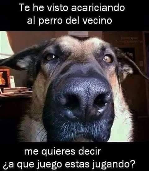 Marcianadas_190_310720150950 (97)