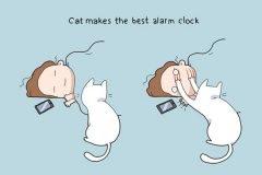 Ilustraciones nos muestran la ventaja de tener un gato