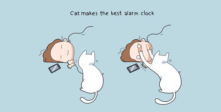beneficios tener gato-002