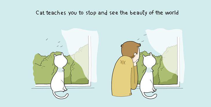 beneficios tener gato-006